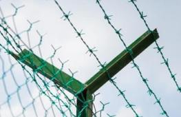 PVC-Coated-Barb-Wire