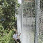 anti climb fencing with razer wire2