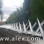 alex.com.my wall spikes (2)