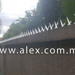 alex.com.my wall spikes (3)