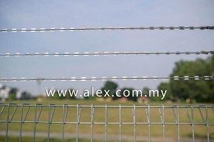 alex.com_.my-razor-wire-straight-line-1-1